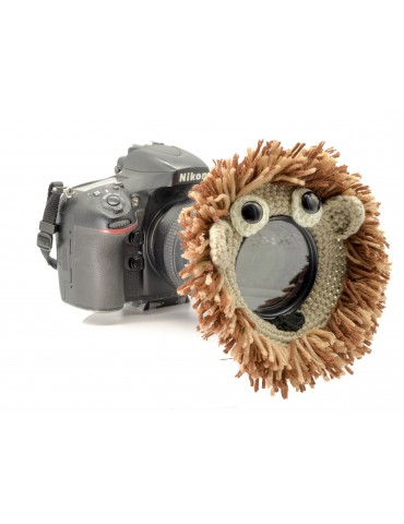 """Lens Lion"" For Creative..."